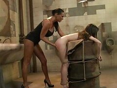 Skinny brunette lesbian gets bound and dominated in toilet