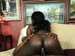 Plump ebony hottie Ms Sassi gets fucked so hard all of her curves bounce