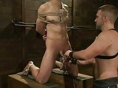 Gay in bondage gets his cock tortured