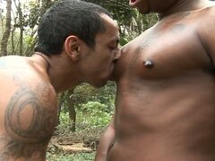 Horny black gays ass fucking outdoors