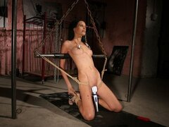 A cute brunette chick is tied up by her fetish loving boyfriend and has her vag vibrated like crazy