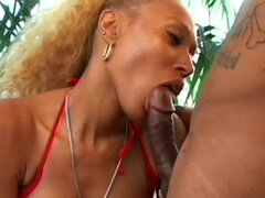 Bishop bangs asshole of big-titted babe Monica Bishop
