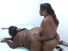 Two fat ebony lesbians eat pussies and fuck each other with a strap on