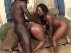 Oiled black twat getting bounced by fat cock in a threesome fuck