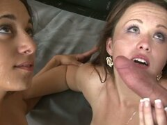 A Collection Of Cuties Enjoying Cum On Their Faces