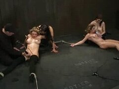 Two bound babes fisted on the floor