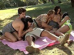 A Picnic In The Park Ends in an Outdoors Group Sex