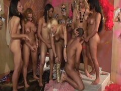 25 shemale trannies ready to give cock pleasure